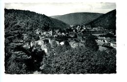 Alle-sur-Semois - Vue Du Petit-Monceau
