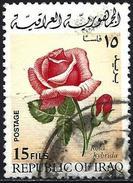 Iraq 1970 - Flowers : Rose ( Mi 613 - YT 583 )