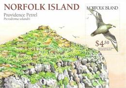 NORFOLK  MNH  BIRDS  1999