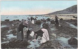 76 - DIEPPE - Pêche Aux Moules / Années 1900 - Dieppe
