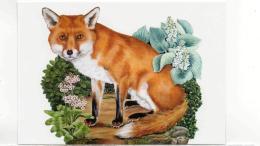 Postcard - Animal Box - Art - Katherine Barnwell - Fox - 2012 New - Cartes Postales
