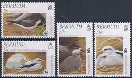 MDW-BK1-035 MDB MINT PF/MNH ¤ BERMUDA 2001 4w In Serie ¤ WWF - BIRDS - ENDANGERED ANIMALS