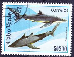 Kap Verde - Blauhai (Prionace Glauca) (MiNr: 424) 1980 - Gest Used Obl