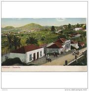 SCDTTPA1210CPA-LFT6196TABU.Tarjeta Postal DE TENERIFE.Casa,arboles,campo,animales BURROS En MATANZA.El Teide,al Fondo - Burros