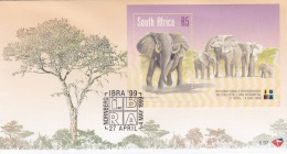 South Africa FDC 1999 Elephants Souvenir Sheet (G81-5)