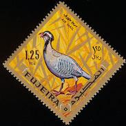 Fujeira. 1969. Arabian Partridge    Alectoris Melanocephala