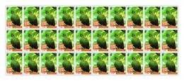 Sierra Leone 2016, Animals, Birds Tauraco Persa Buffoni, Sheetlet Of 30val
