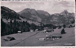 Turbachtal Gstaad  (2116)