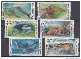 Bulgarie 1991  Mi.nr.:3959-3964 Meeressäugetiere  Neuf Sans Charniere / Mnh / Postfris