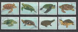 SURINAME 1982 - TORTUES - TURTLES - CPL. SET - OBLITERE USED GESTEMELT USADO - Tortues