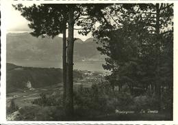 Montegrino - Sopra Luino (Varese, Lombardia) Pineta E Scorcio Panoramico - Varese