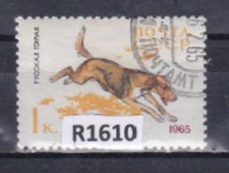 """URSS 1965: Francobollo  Usato Da 1 K. Della Serie """"Cani Di Razza""""."""