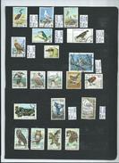 80 Briefmarken Vögel & Eulen Gestempelt