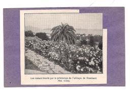 EX LIBRIS LES ROSIERS FLEURIS Par Le Printemps De L'ABBAYE DE ROSELAND - - Ex-libris
