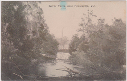 LB 7 : River  Yarra , Near  Healesville , Vic - Australie