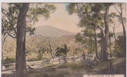 LB 7 :  Mt  St  Leonard , From  The  Healesville  Road , Victoria - Australien
