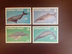 Falkland Islands 1989 Whales MNH