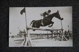 Equitation - Saut D'Obstacle - Postcards