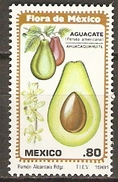 MEXIQUE    -    1981 .   Fruits  /  Avocats.    Neuf ** Luxe. - Mexique