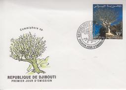Enveloppe  FDC  1er  Jour   DJIBOUTI    Flore  Spécifique   Arbre   1990