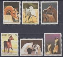 1995.30- * CUBA 1995. MNH. CABALLOS DE RAZA. HORSE. - Cuba