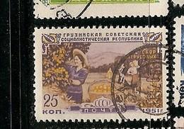 Russia (N31)