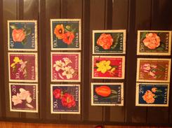 Poland 1964 Flowers Used/CTO SG 1528-39 Sc 1279-90 Yv 1394-1405