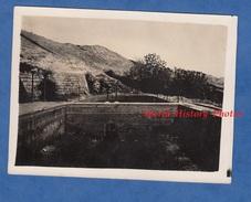 CPA Photo - Vieux JERICHO - Les  Fontaines D' Elysée - Cisjordanie Palestine