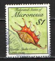 MICRONESIA - 1989 - SHELL - CONCHIGLIA DELL'OCEANO - USATO