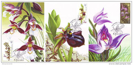 UKRAINE 2015. ORCHIDS. NATIONAL BOTANICAL GARDEN. Mi-Nr. 1520-22. Set Of 4 MAXICARDS - CARTES MAXIMUM