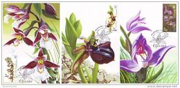 UKRAINE 2015. ORCHIDS. NATIONAL BOTANICAL GARDEN. Mi-Nr. 1520-22. Set Of 4 MAXICARDS - CARTES MAXIMUM - Orchidee