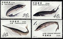 China 1994-3 Sturgeon Fish Stamps Marine Life Fauna
