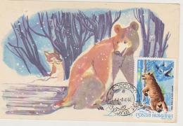 MAXIMUM CARD BEAR Fooled By FOX   -ROMANIA STORES