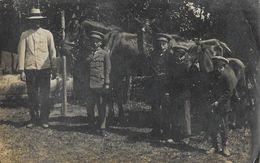 Carte-Photo D'Allemagne à Identifier: Beilstein (Rhénanie-Palatina) En 1915 - Enfants En Uniforme Et Chevaux - Te Identificeren