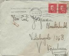 Sweden - Cover Sent To Denmark 1930.  H-934 - Suède