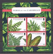 A30 MONTSERRAT FLORA NATURE PLANTS FLOWERS FERNS OF THE CARIBBEAN 1KB MNH