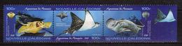 New Caledonia / NOUVELLE CALEDONIE 2004 Noumea Aquarium.Batoidea,rays,fish.strip Of 3.MNH - Nouvelle-Calédonie