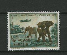 SOMALIA -  ELEPHANT  -  ELEFANTE  NUOVO MNH