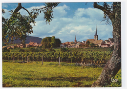 67.295.11 MITTELBERGHEIM - Edts La Cigogne - Vue Générale (recto-verso) - Autres Communes