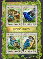 SIERRA LEONE 2016 ** Indigo Birds Indigo Vögel Oiseaux Indigo M/S - OFFICIAL ISSUE - A1707