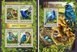 SIERRA LEONE 2016 ** Indigo Birds Indigo Vögel Oiseaux Indigo M/S+S/S - OFFICIAL ISSUE - A1707