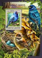 SIERRA LEONE 2016 ** Indigo Birds Indigo Vögel Oiseaux Indigo S/S - IMPERFORATED - A1707