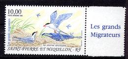Saint Pierre & Miquelon Yvert Pa74 Neuf ** MNH Oiseau Bird Vogel Sterne Arctique