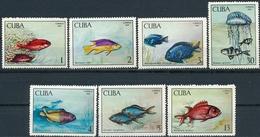 Cuba  Vissen