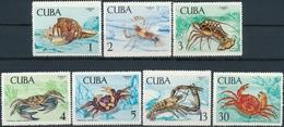 Cuba  Zeeleven