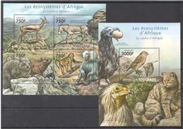 B29 2011 TOGOLAISE FAUNA ANIMALS LES ECOSYSTEMES D'AFRIQUE LA CORNE KB+BL MNH