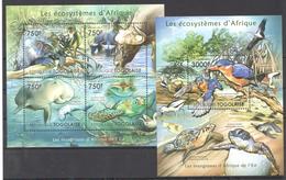B37 2011 TOGOLAISE FAUNA ANIMALS LES ECOSYSTEMES D'AFRIQUE DE L'EST KB+BL MNH