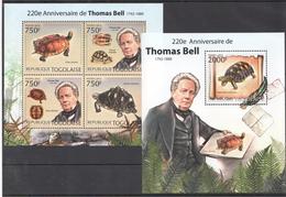 B43 2012 TOGOLAISE FAUNA REPTILES TURTLES THOMAS BELL KB+BL MNH