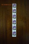 Bund 2005 Mi.2480, Scott 2307 Rollenmarke 6er Streifen Blumen: Krokus 5 C Gestempelt - Usados