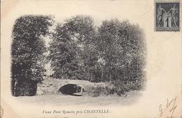 VIEUX PONT ROMAIN  PRES DE CHANTELLE     CARTE PRECURSEUR